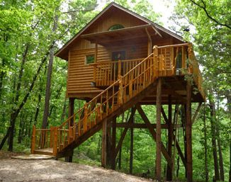 Tree House Ideas Tree House Design Ideas Pictures