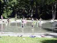 Lincoln Park Wading Pool West Seattle Park Pool West Seattle
