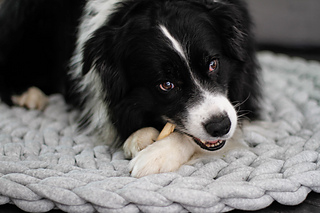 Rugzilla Easy Jumbo Dog Bed Rug Jumbo Dog Bed Bed Rug Dog Bed