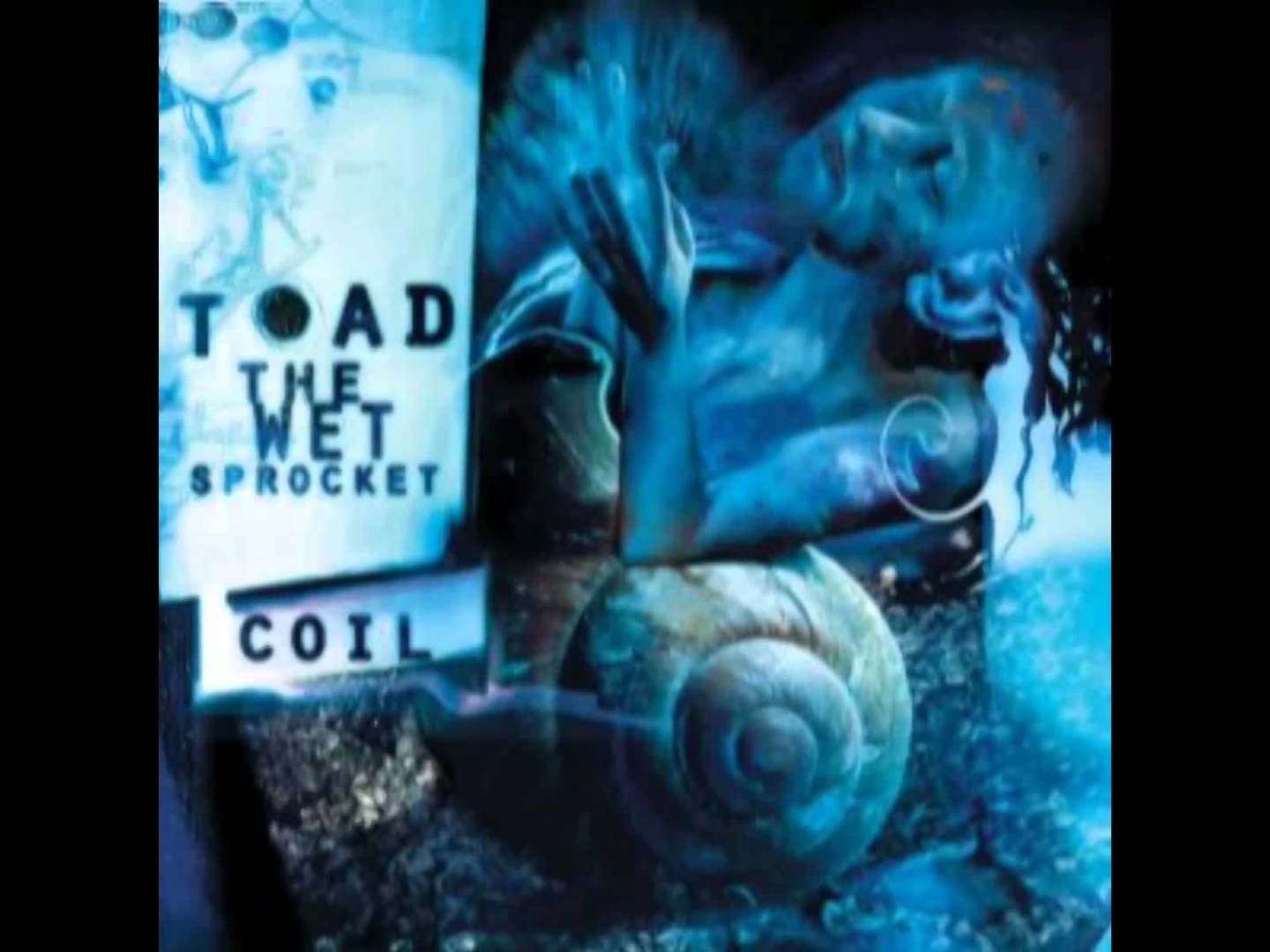 Ill bet on you toad the wet sprocket how many mhash per bitcoins