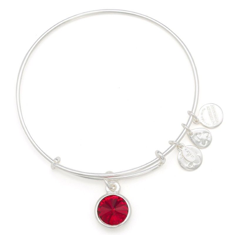 ee1bc2e23c July Birthstone Charm Bracelet | Alex and Ani Passion • Contentment • Love  $28.00 Shiny Silver Finish A symbol of vitality and royalty, July's ruby is  the ...