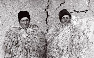 The twins by Janos Stekovics