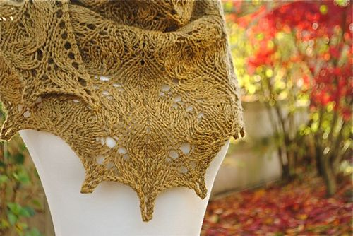 Ravelry: Cedar Grove Shawl pattern by Judy Marples