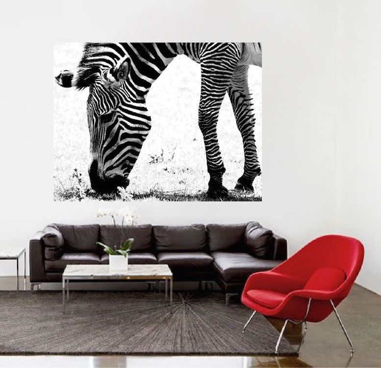 Zebra Wall Mural Decal Large Decals African Wall Decal Murals