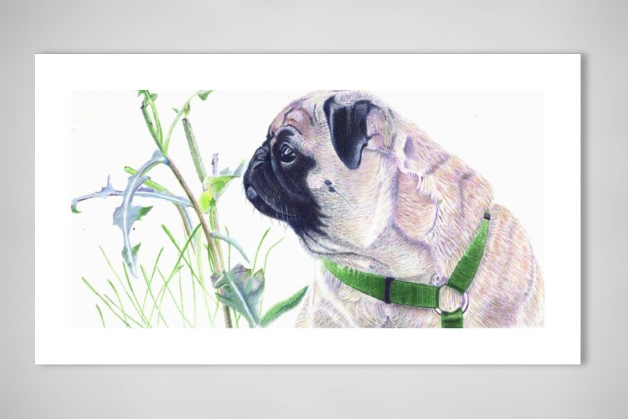 Pug And Nature Art Print Cool Art Art Art Prints Dog Art