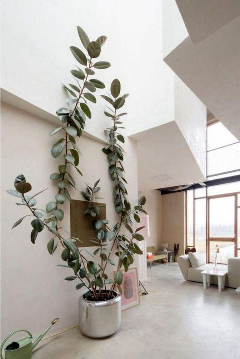 51 Smart Ideas To Display Indoor Plants Wall Climbing 400 x 300