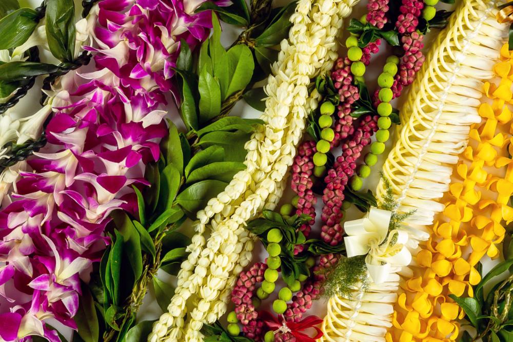 flower lei Google Search in 2020 Flower lei, Hawaiian