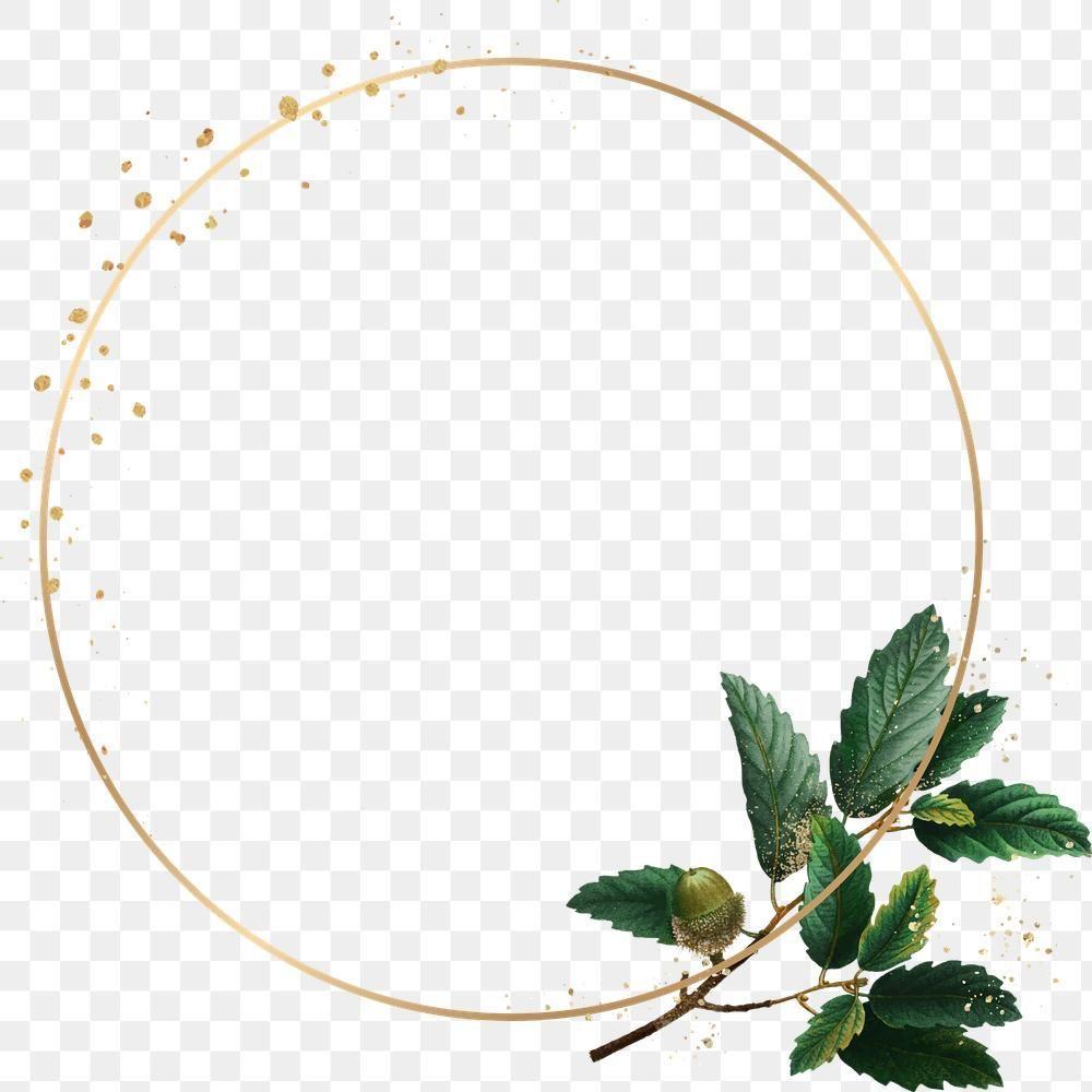Frame Png Botanical Oak Leaf Pattern Free Image By Rawpixel Com Pam Leaf Pattern Oak Leaf Png