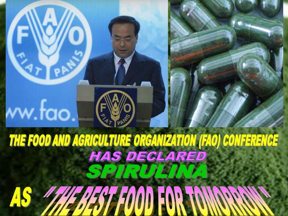 Fao Has Declared Spirulina As The Best Food For Tomorrow Spirulina Food Best Foods