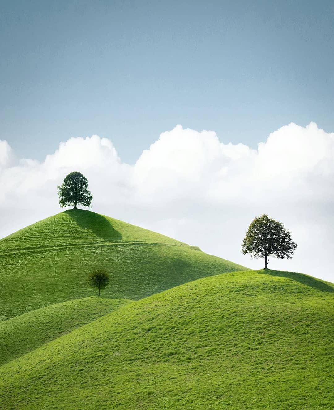 A Photo Of Two Trees Upon Two Hills Is So Simple Yet So Beautiful Photo By Tomarcherphoto Landscape Landscape Photography Travel Fun