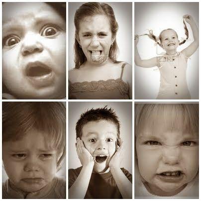 Le emozioni. L'emozione come concetto