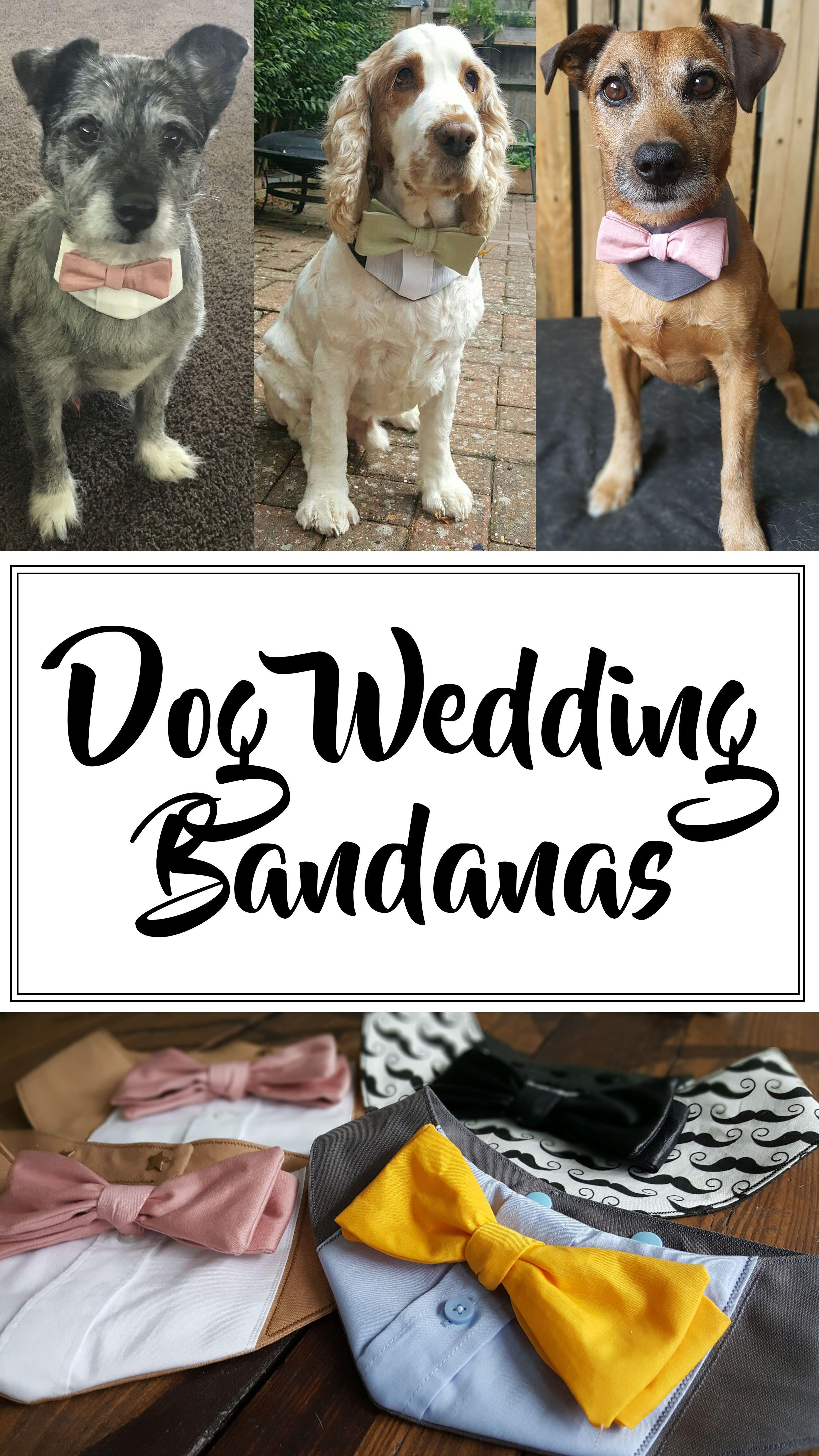 Dog Wedding Bandana | Perfect wedding, Dog and Weddings