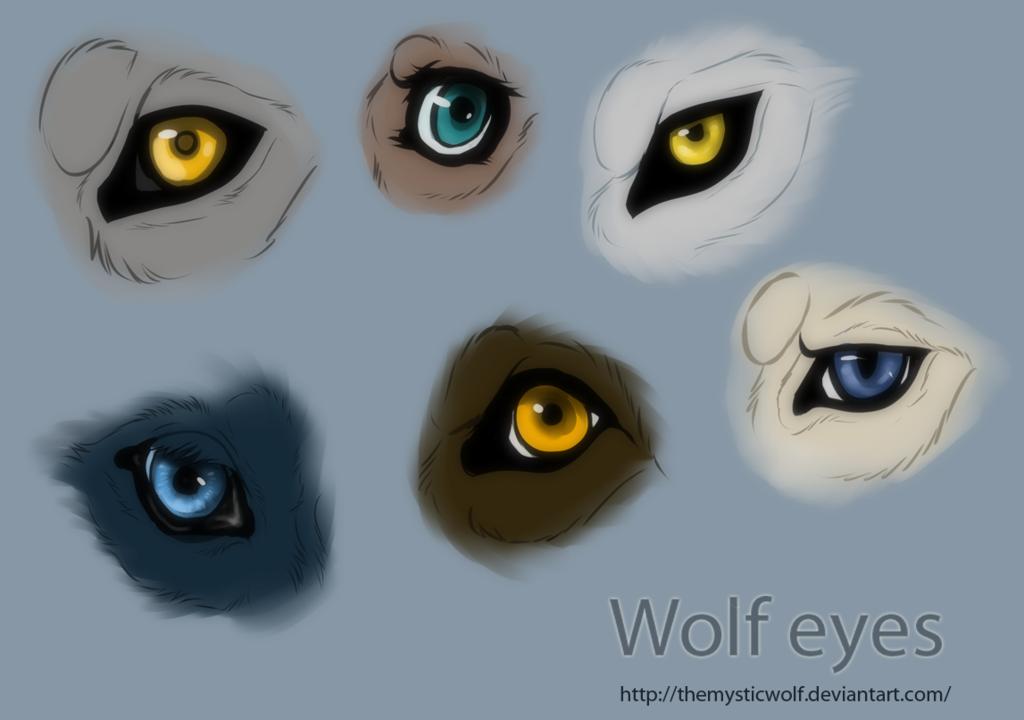Wolf Eyes By Themysticwolf Deviantart Com On Deviantart Wolf Eyes Wolf Eye Drawing Wolf Drawing