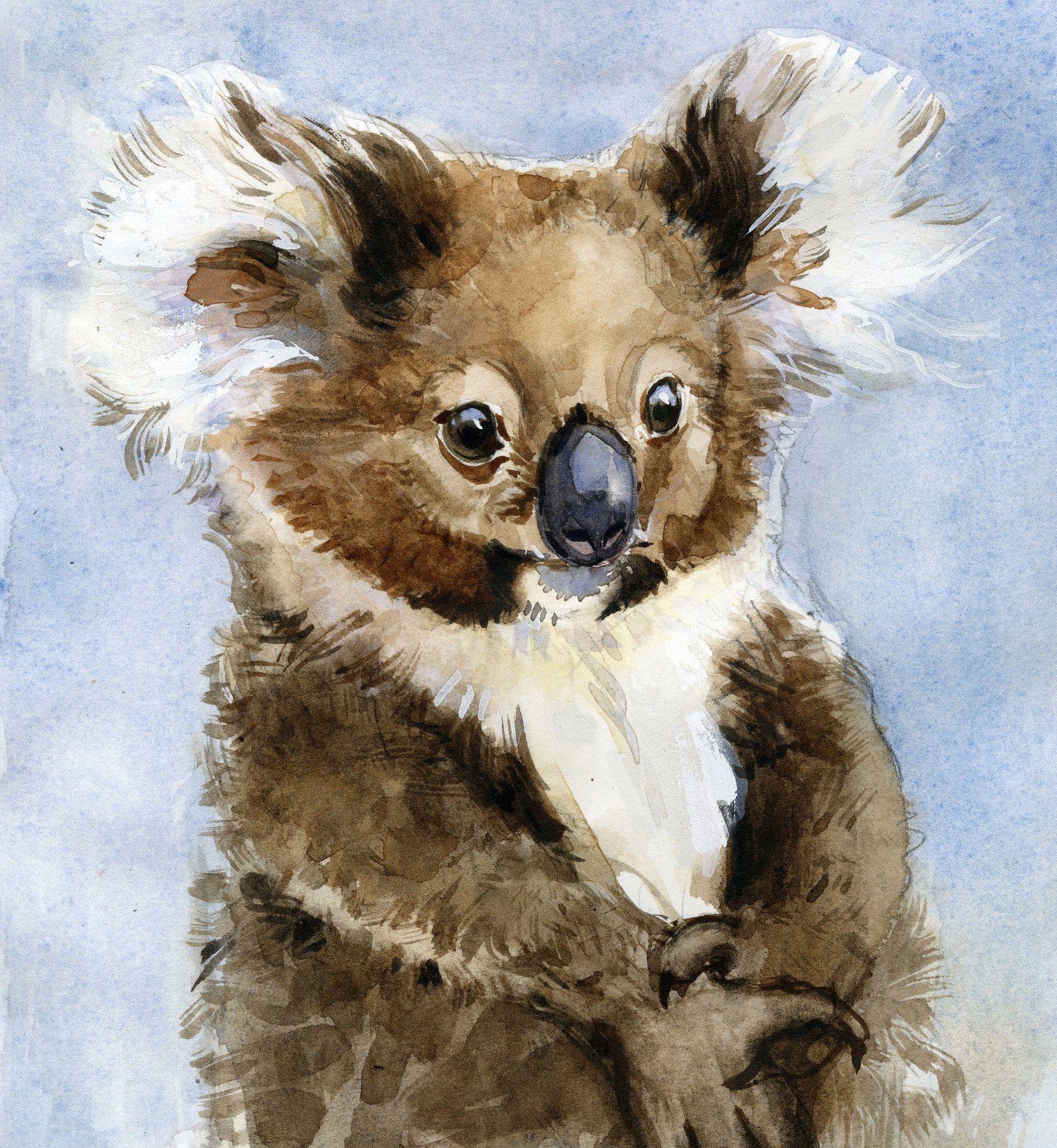 Koala Watercolor Paintings Nature Bear Paintings Animal Paintings