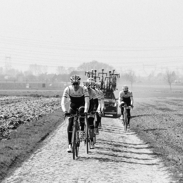 for Roubaix! #showyourstripes #thismachinekillscobbles photo by @emilymaye Credit trekfactory