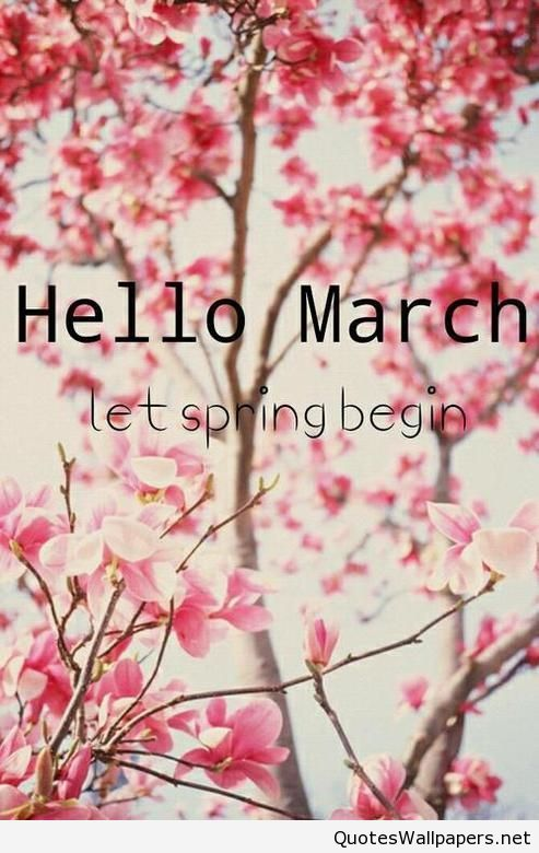 Phone Mobile Hello March Wallpaper Hd