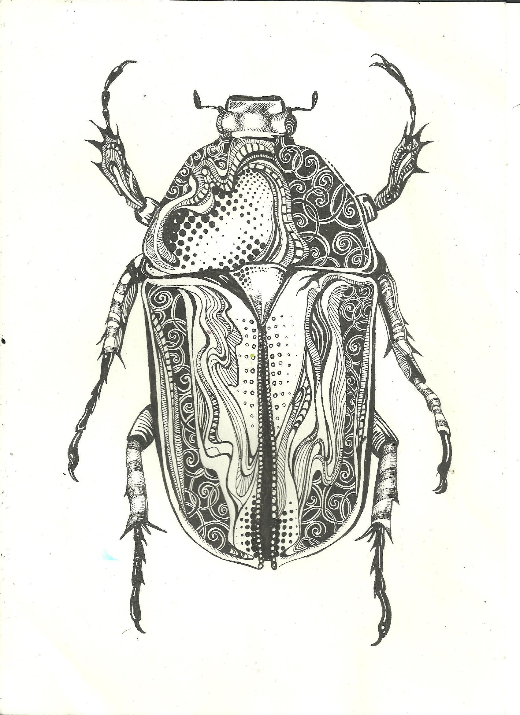 pen beetle - sold | Decoupage | Pinterest | Insectos, Escarabajo y ...