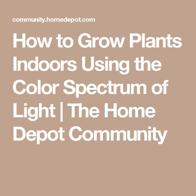 Indoor Grow Lights Home Depot: How To Grow Plants Indoors Using The Color Spectrum Of
