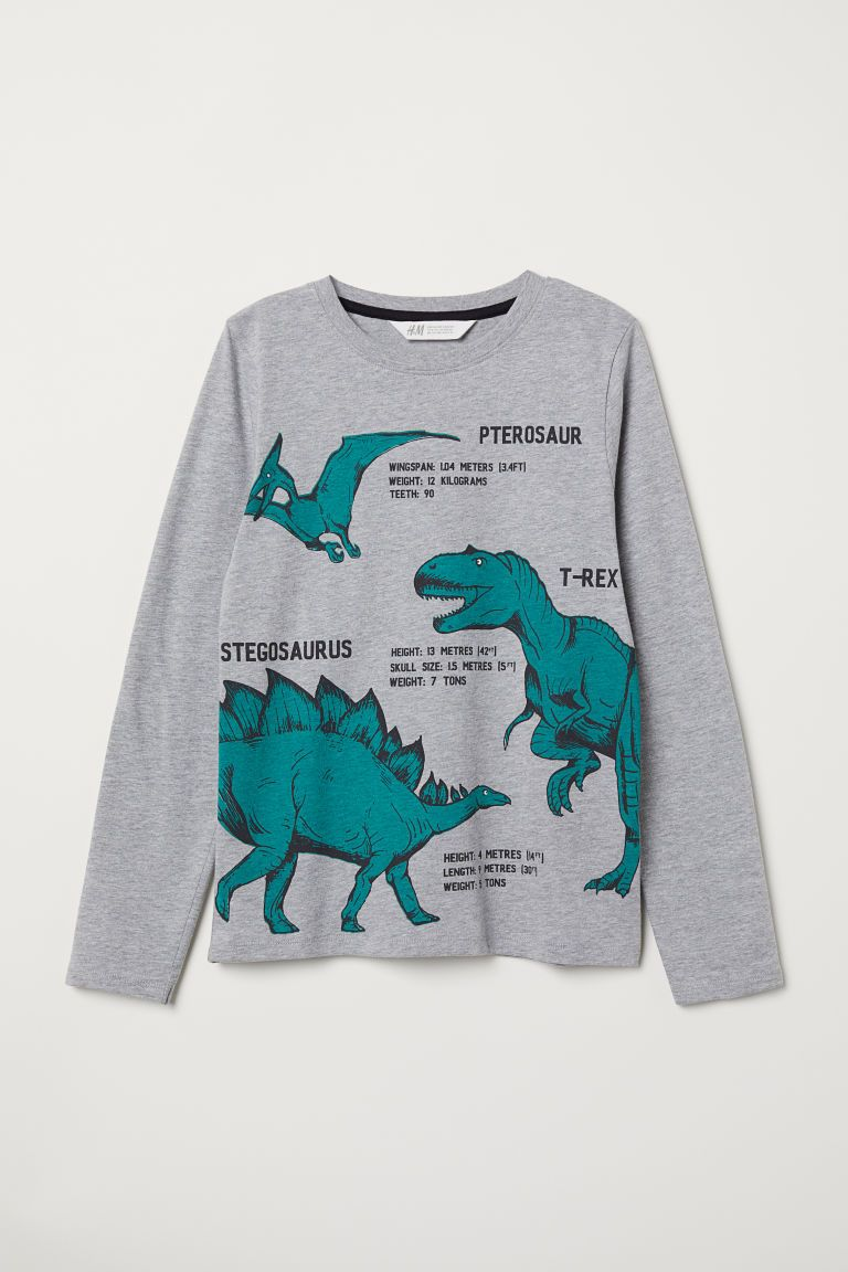 c41203847 Camiseta de punto con motivo - Gris jaspeado Dinosaurios - NIÑOS