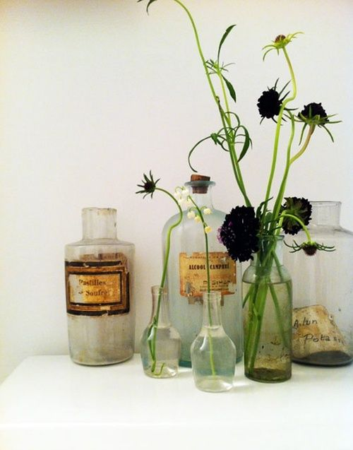 Old bottles and plants.