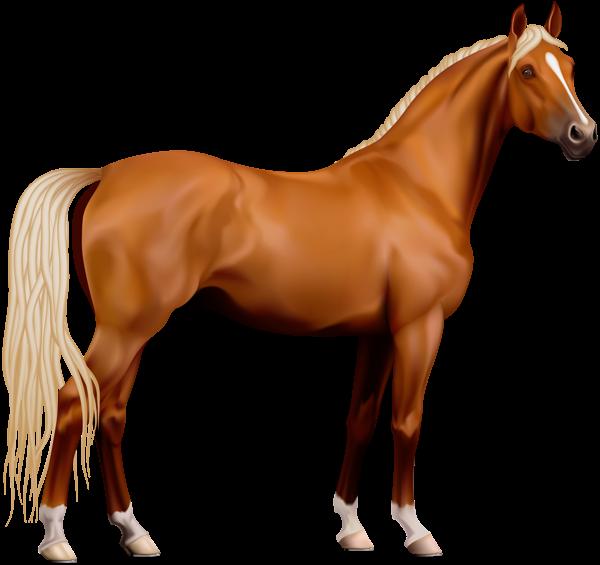 Transparent Horse Png Clipart Horses Horse Clip Art Chestnut Horse