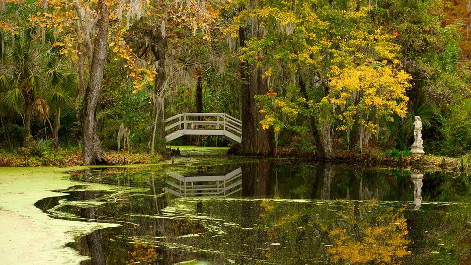 Charleston Vacations: Package & Save up to $570 | Expedia