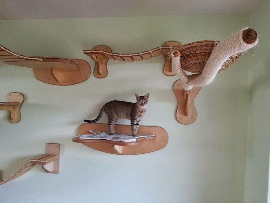 juegos de cuidar mascotas juegos de gatos bebes juegos de