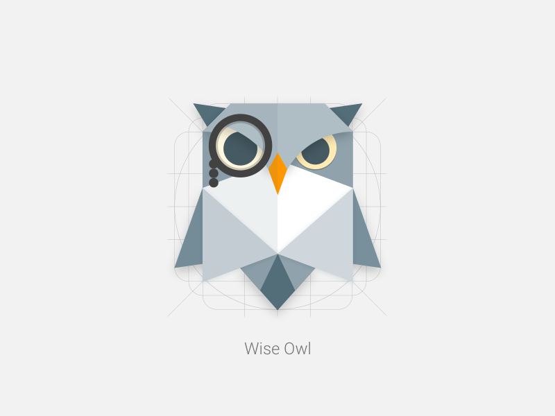Wise Owl Product Icon   Wise owl, Material design and Origami   800 x 600 png 38kB