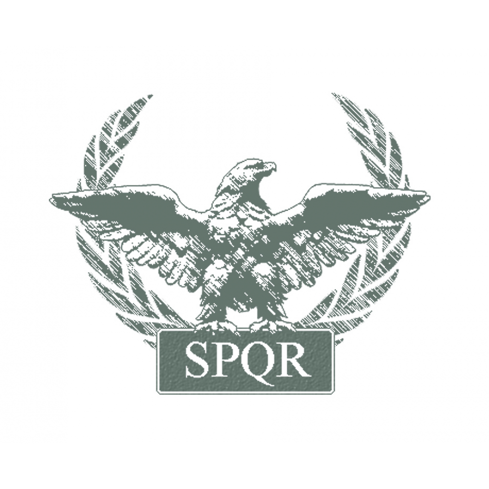 Roman Legion | Military | Pinterest | Roman legion, Roman ...