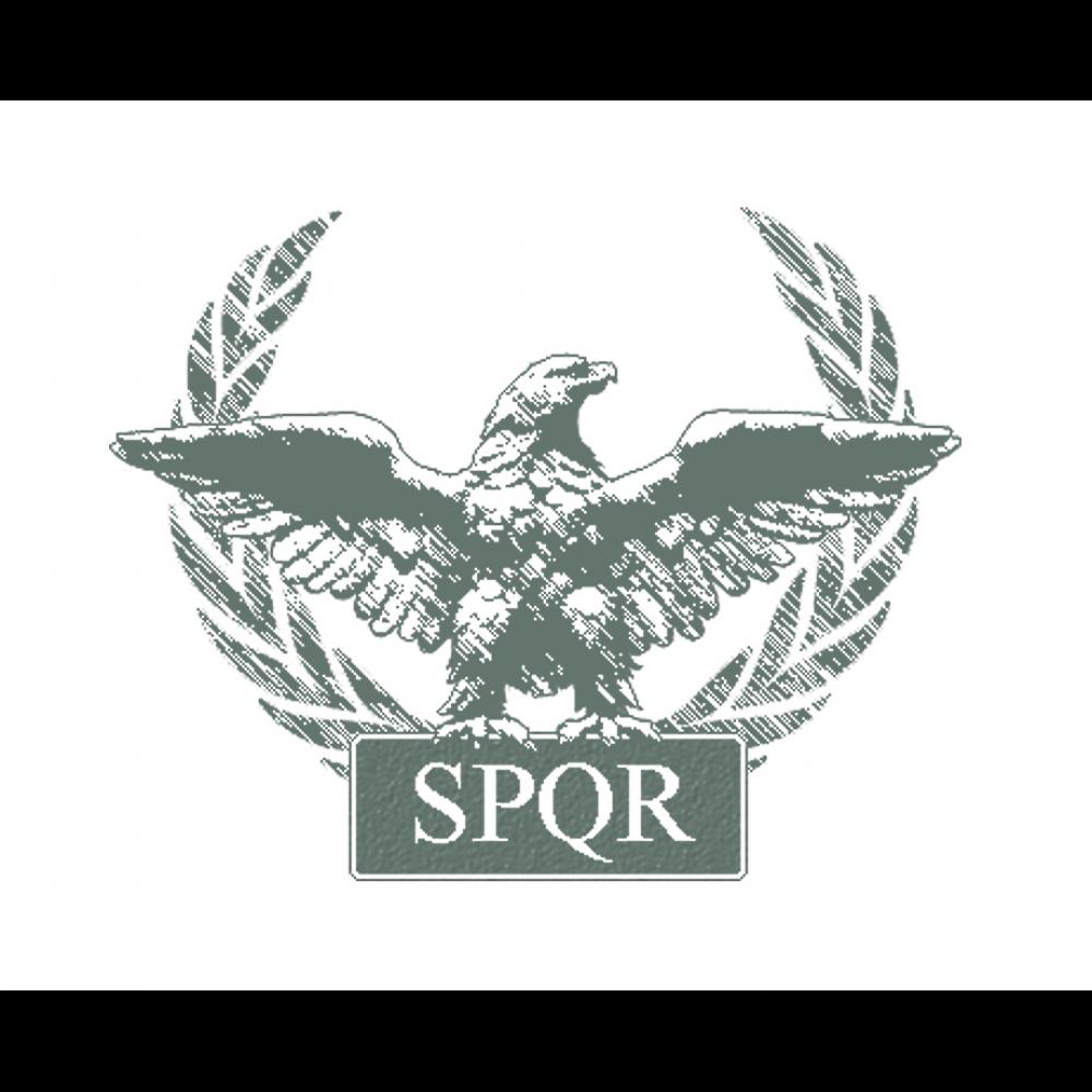 Gladiator Tattoo Spqr: Roman Tattoo, Roman Empire, Warrior Tattoos