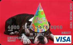 Evne Pets Celebrate Birthdays Birthday Pug Visa Gift Card