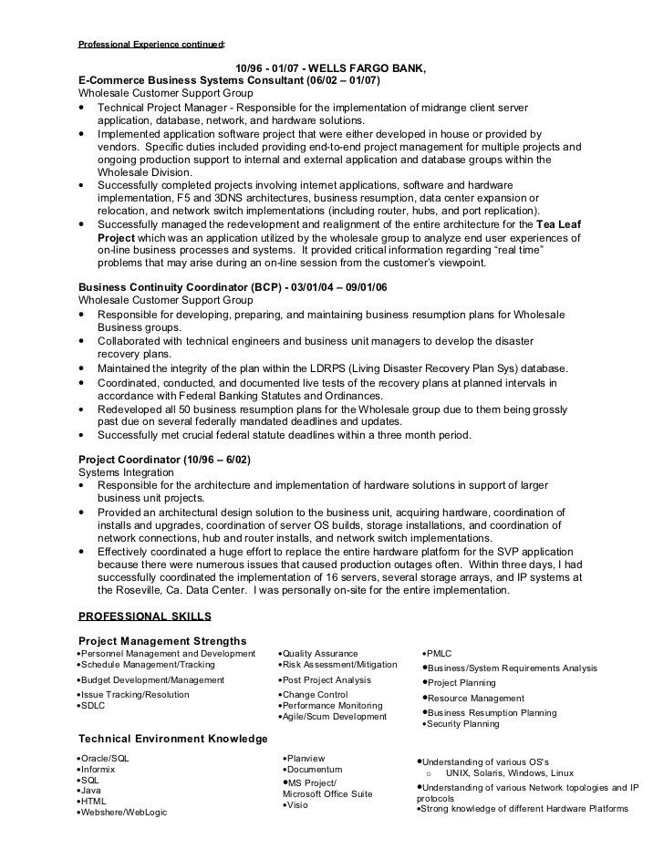 Sample Resume Infrastructure Project Manager Project Manager - business systems specialist sample resume