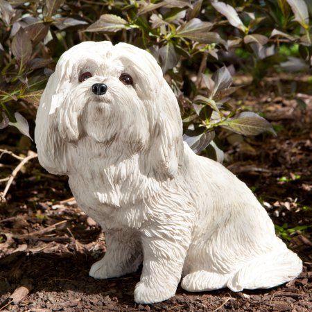 Sandicast Original Size Sitting Maltese Dog Sculpture Walmart Com Maltese Dogs Dog Trends Maltese