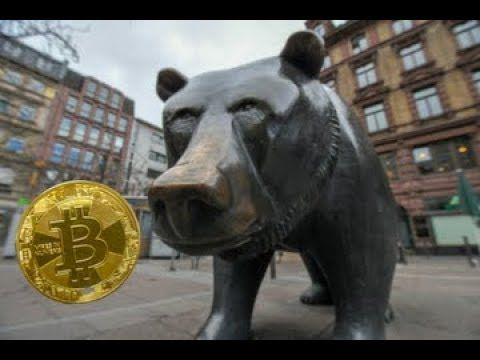Cryptocurrency in bear market