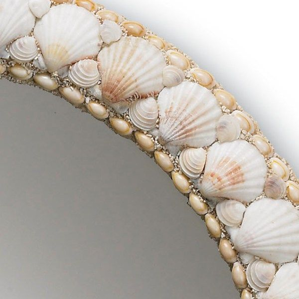 Shell Mirror, Nice pattern of shells