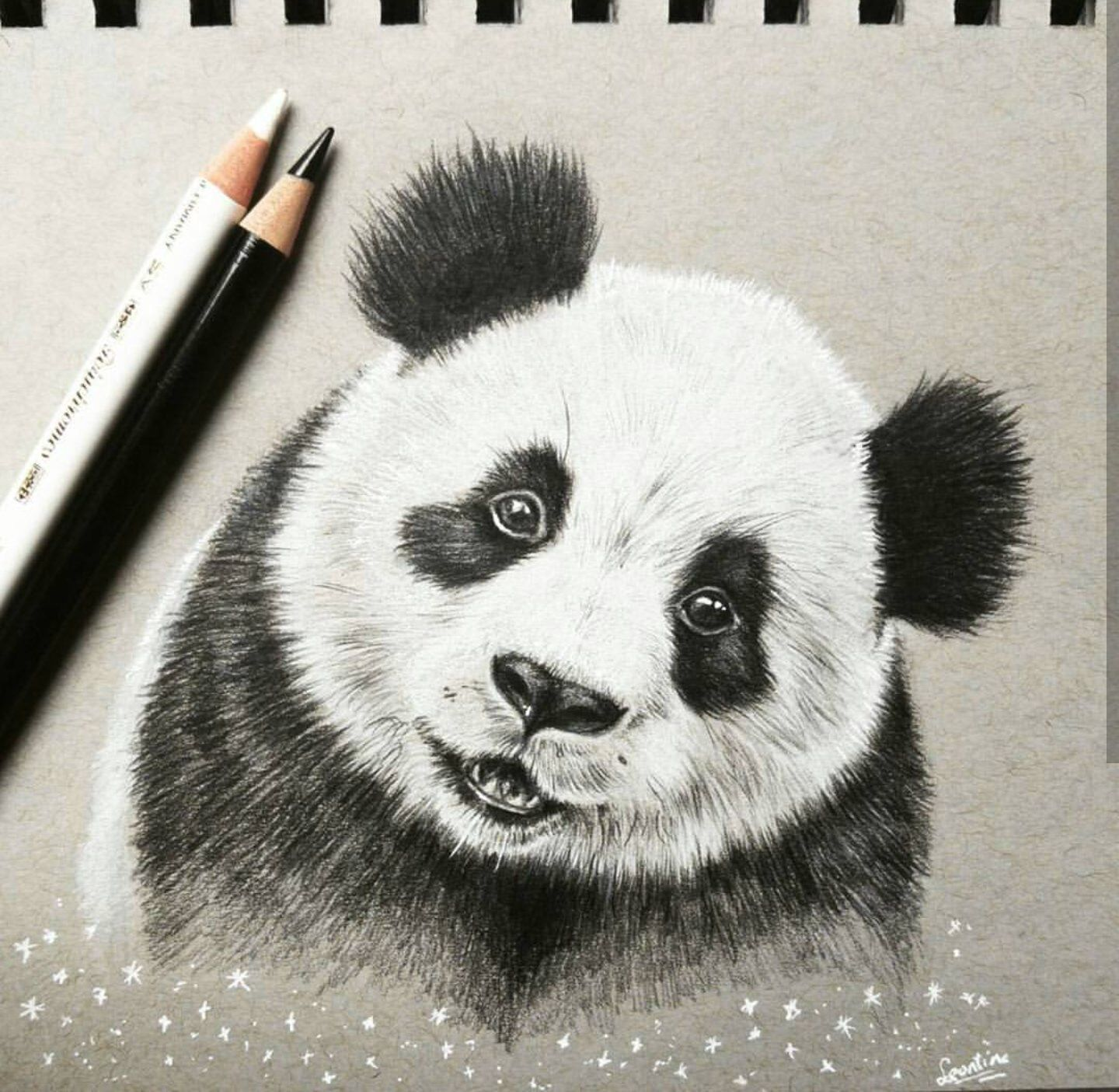 Panda drawing pandas in 2019 pencil drawings panda drawing