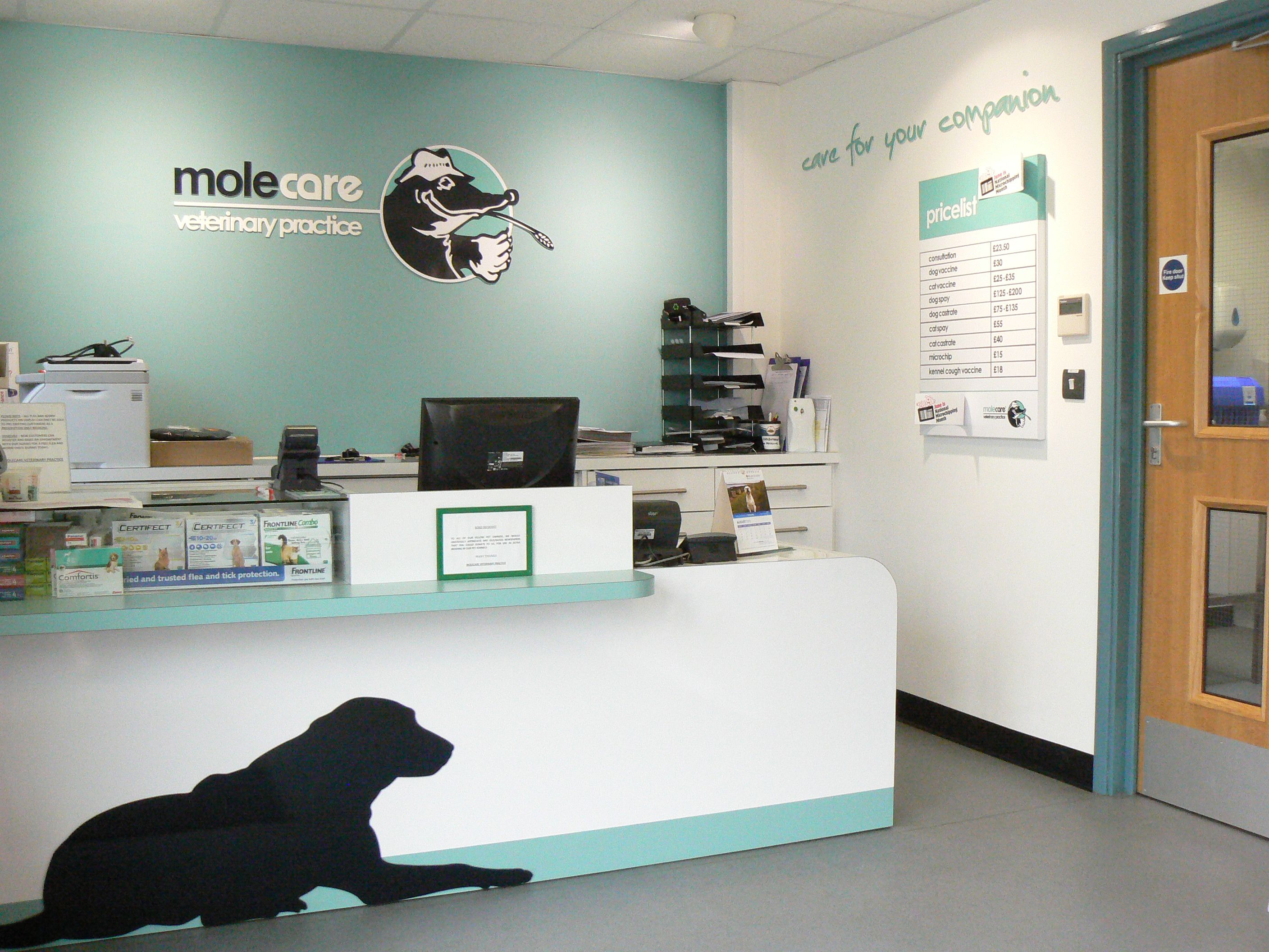 Wall Murals For Schools Molecare Veterinary Practice Reception Area Work Related