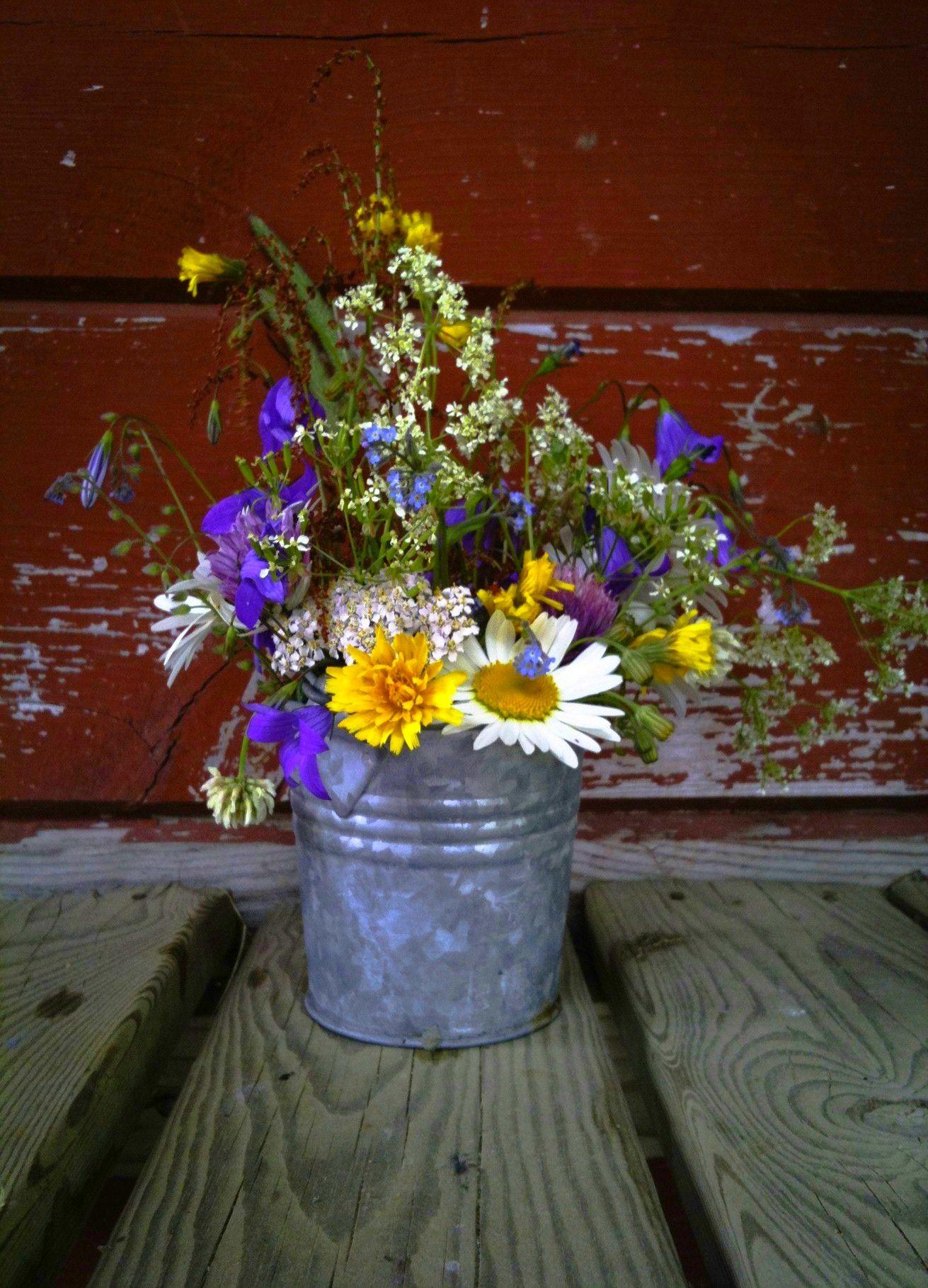 Summer flowers – Kesäkukkia