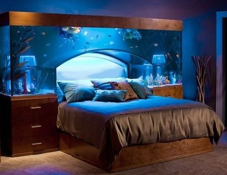 Aquarium Headboard Bed. If woke-up in the middle of the night, it would still feel like in a dream.