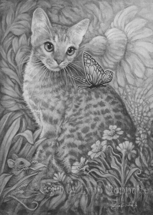 Grayscale Coloring Page Cats Illustration Cat Illustration Cat