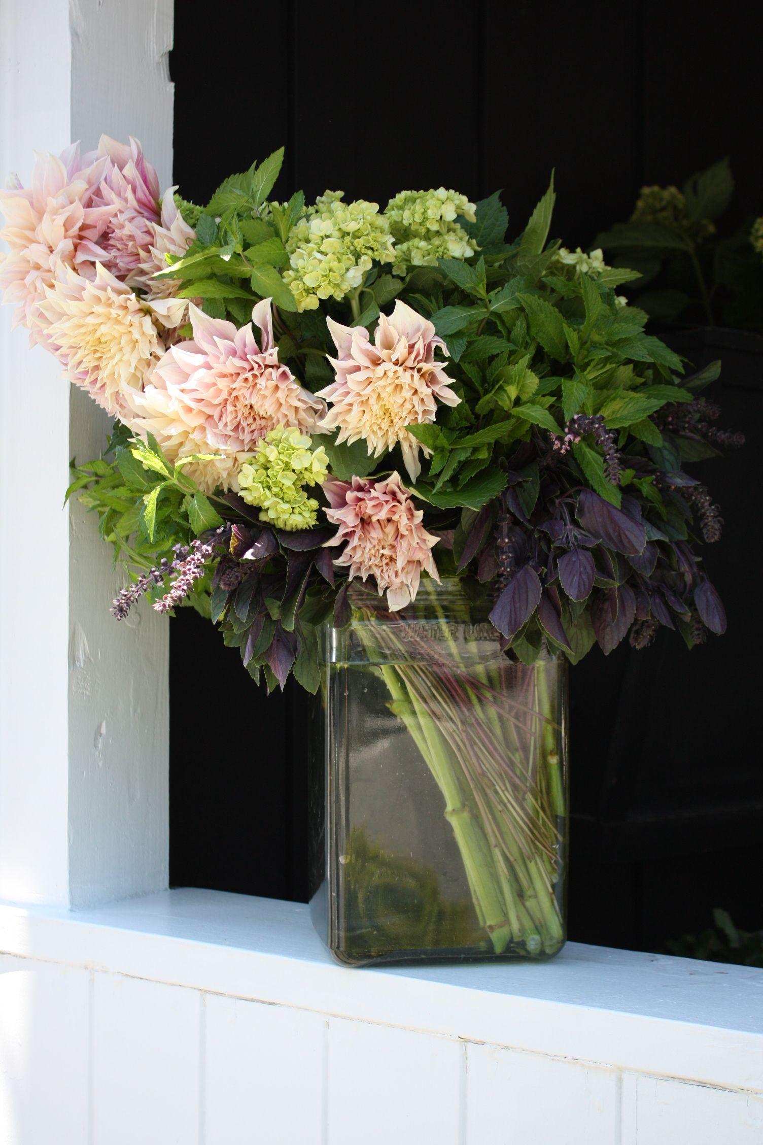 Herbal arrangement of purple basil, mint and cafe au lait
