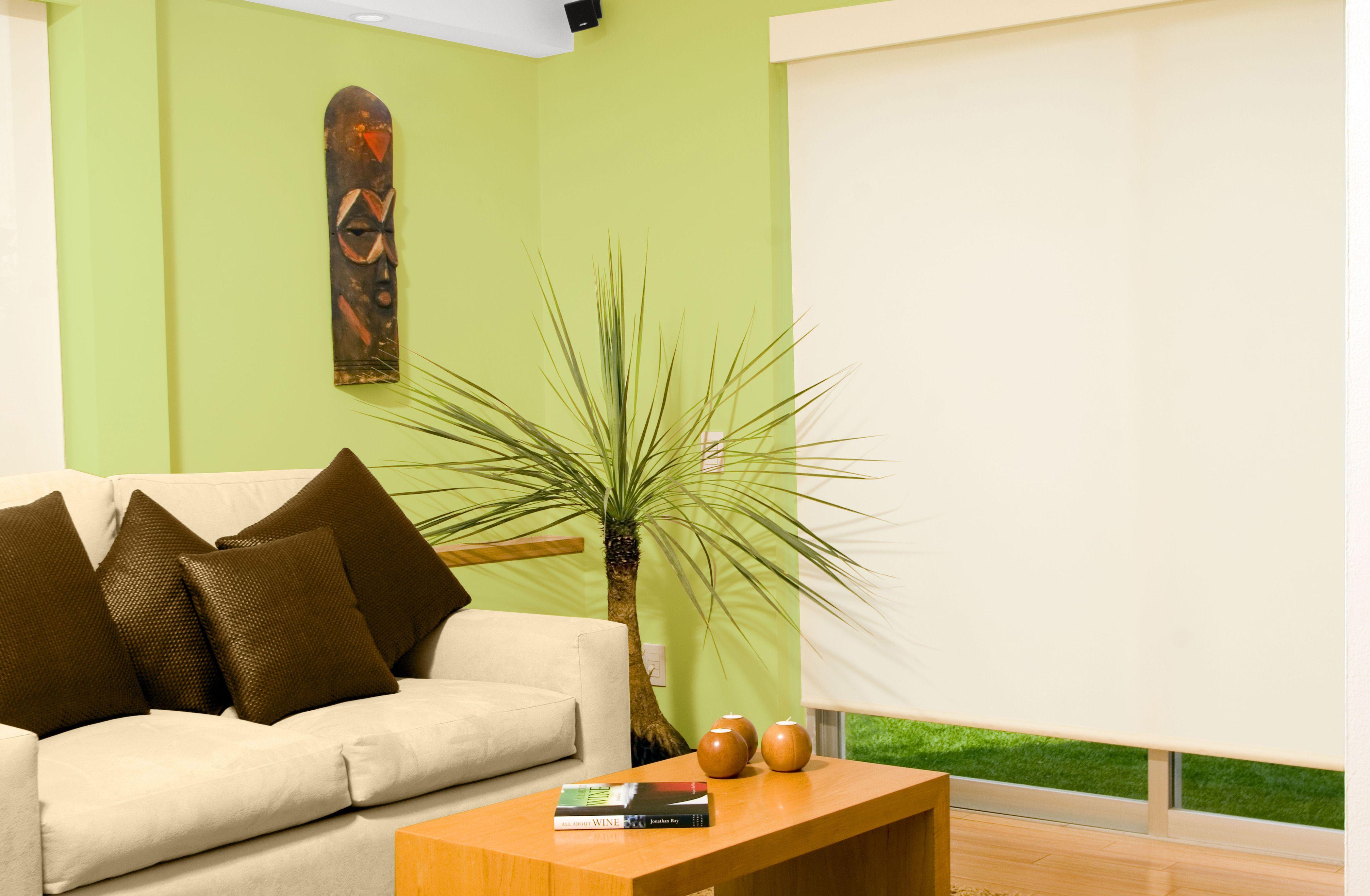 Un Verde Mas Claro Dara Claridad A Tu Estancia Decoracion De Muros Colores Para Casas Decoracion De Interiores