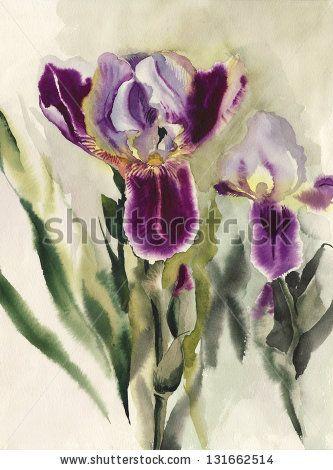 Iris flowers original watercolor painting. by Veronika Surovtseva, via ShutterStock