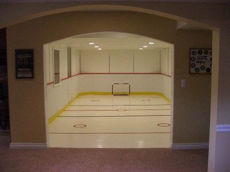 Synthetic ice hockey rink that finished basements plus for Basement plus