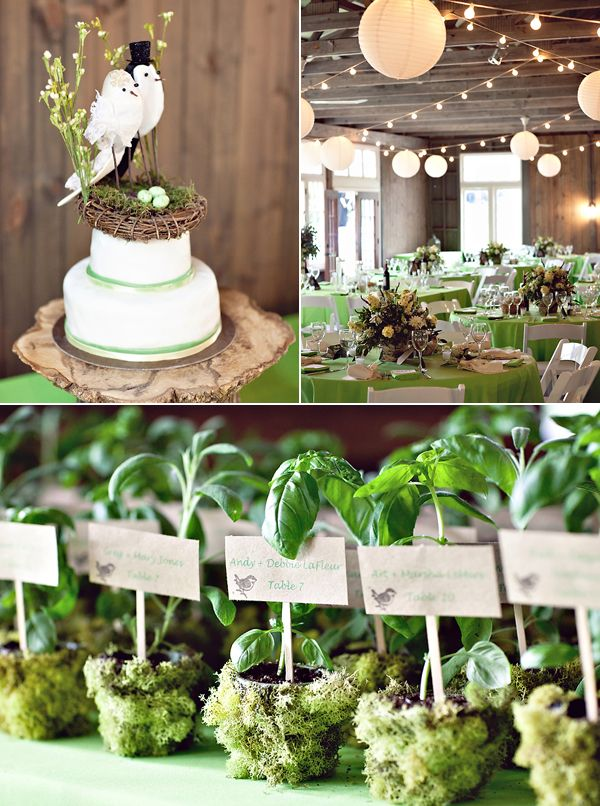 like the photo on the upper right | weddings | Herb ...