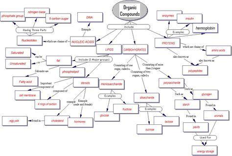 Organic Compounds Concept Map Concept Map Organic Compounds | aeropilatesleon Organic Compounds Concept Map