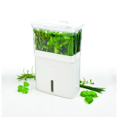 Cole Mason Fresh Herb Keeper Plastic P*T Planter In 2020 400 x 300