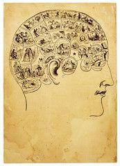 Old Phrenology Illustration
