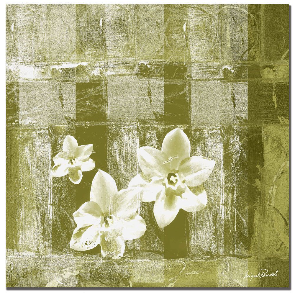 Abstract Flower XVIII by Miguel Paredes Painting Print on Wrapped ...