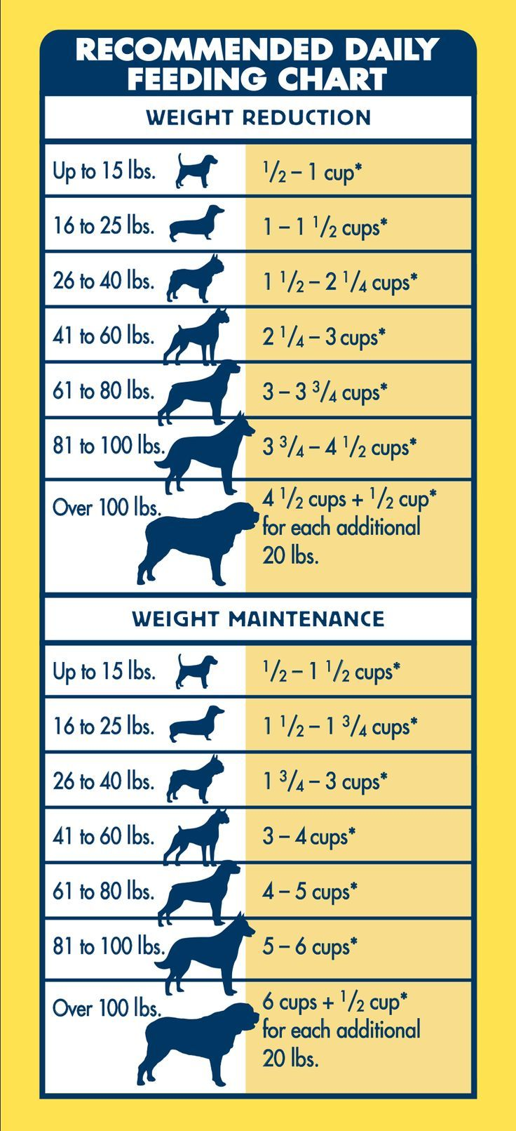 Can Canned Dog Food Aid Weight Loss